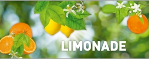 Limonaden Sortiment